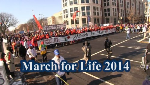 "Be the voice of the unborn.  Share this video.  http://www.tfpstudentaction.org/  This annual March for Life marked the forty-first anniversary of Roe v Wade, the 1973 Supreme Court decision that paved the way for 56 million surgical abortions in America.  Since its legal inception, the sin of abortion has inflicted nothing but massive wounds on the family and society: missing generations of children, lost motherhood, dishonored fatherhood, shattered homes, depression, never-ending regret and moral decay, not to mention those ""houses of horror"" run by the ungodly likes of Kermit Gosnell.  Planned Parenthood is Worried  But the Culture of Death is losing ground.   According to a study by Operation Rescue, a record number of 87 abortion clinics have closed down in 2013.  Another telling survey published by the pro-abortion Guttmacher Institute has tracked over 200 legislative losses for the abortion industry over the last three years.  In fact, more abortion restrictions were passed by state legislatures in 2011-2013 than in the previous ten years combined.  That is why Planned Parenthood president Cecile Richards, speaking of recent legislation restricting abortions in Texas, voiced her concern to The New York Times on January 3: ""Any one of the restrictions passed in the last several years would be bad, but taken together, we are witnessing a catastrophe for Texas women,"" she said.  While pro-lifers literally covered Capitol Hill, dozens of smaller marches were held at regional or state levels.  This type of innovation is what NARAL doesn't want.  The Walk for Life in San Francisco (of all places) is a good example of the vitality and dynamism of the pro-life movement.  It just keeps growing.  Last year 55,000 attended.  And when this march first started in 2005, the president of Golden Gate Planned Parenthood, Dian Harrison, was a bit stunned:  ""We couldn't believe that they had the nerve to come to San Francisco.""  God bless that nerve.  The more the better.    That same noble resolve to defend the unborn, employing every peaceful and legal means, was written on the faces of the many marchers today as they braved the bone-chilling frost.  Bishops and priests, veteran activists, seasoned side-walk counselors, pro-life leaders, dedicated prayer warriors, college and high school students, Knights of Columbus, parish groups that traveled on buses through the night -- everyone was there to fight the scourge of abortion and make reparation to God.  As the impressive demonstration made its way up Capitol Hill to the steps of the Supreme Court, members of the American Society for the Defense of Tradition, Family, and Property (TFP) marched with their trademark red standards, and the ever-upbeat marching band, complete with brass, bagpipes and drums to encourage the crowd.  TFP volunteers in ceremonial habit also formed an honor guard which carried a beautiful statue of Our Lady of Fatima.  Connect with us:  http://www.facebook.com/TFPStudentAction https://twitter.com/tfpsa http://www.tfpstudentaction.org/  Thank you."